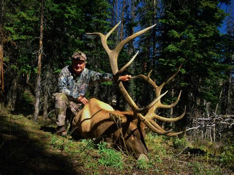 WY Guided Hunts: Antelope Outfitter Area 82 & Elk