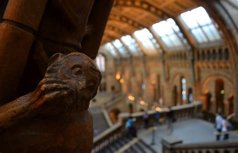 Purcell | Natural History Museum