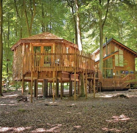 Treehouse holidays in Norfolk - unique glamping treehouses!