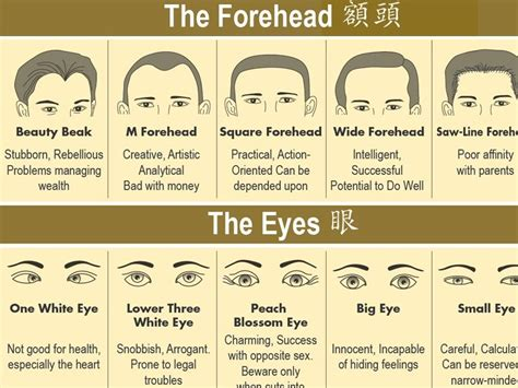 The Art of Face Reading - This Is How to Do It Properly