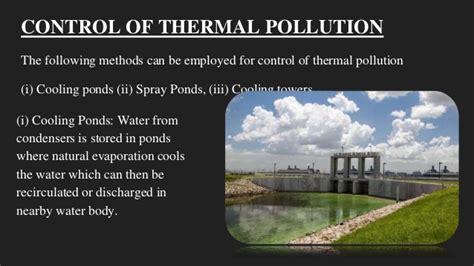 The role of individual in prevention of pollution and