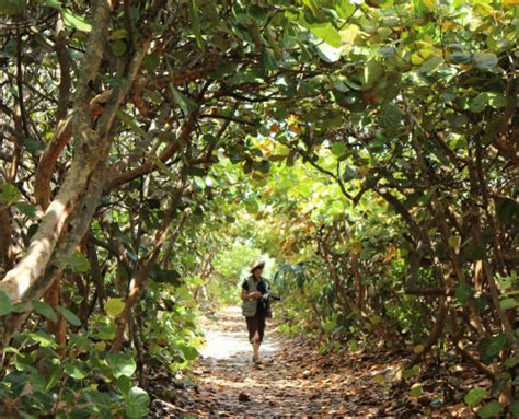 Jupiter Florida Online Guide - Hiking Trails In and Around