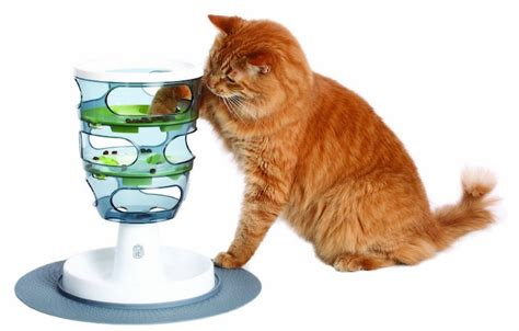 5 Best Interactive Puzzle Food Games for Cats