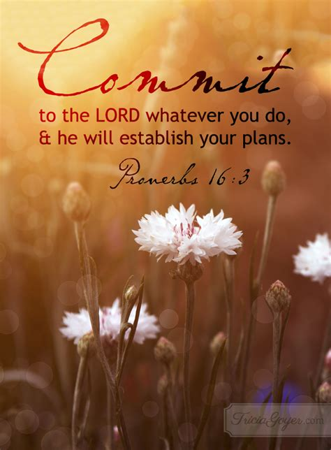 Commit   Proverbs 16:3 - Tricia Goyer