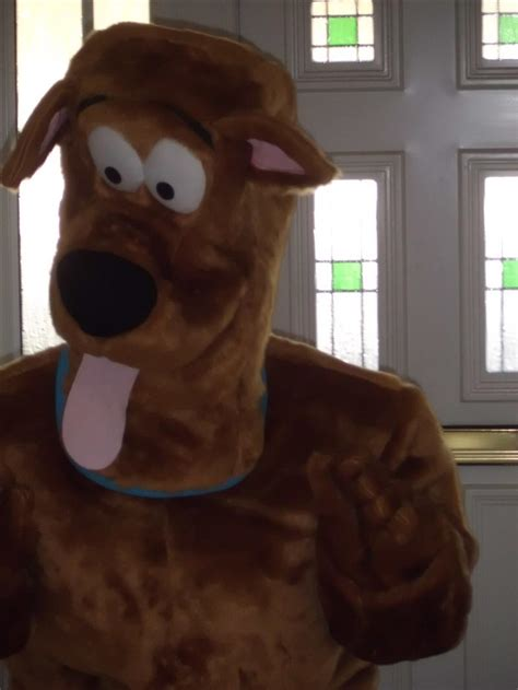 Scooby Doo Mascot Costume - Bouncy Castle & Inflatables