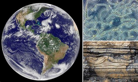 Life on Earth began with a burst of oxygen from