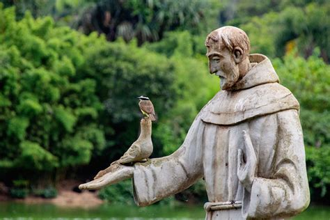 Why is Francis of Assisi the patron saint of ecology