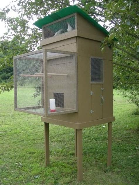 Pin by Bear Mountain Realty on Hobby Farming | Pigeon loft